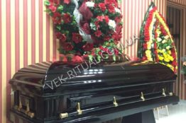 The coffin sarcophagus