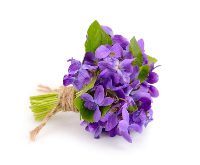 Bouquet of violets for funeral