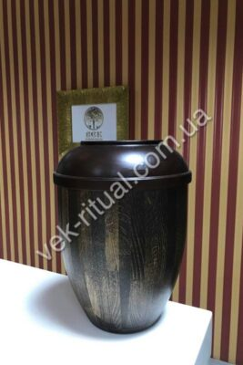 Urn for ashes 38